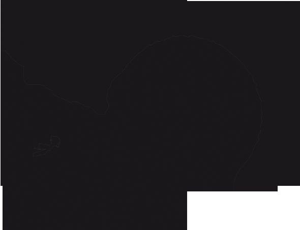 boabrassband.com